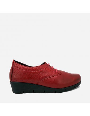 Zapato 3504