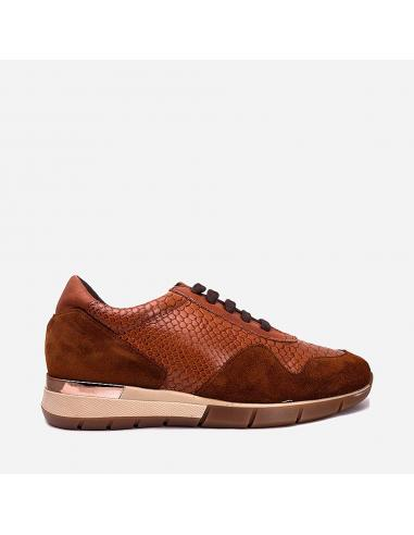 Zapato 2000
