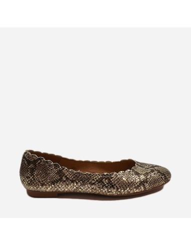 Zapato SOFIA 003
